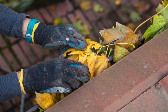 Rens din tagrende og undgå alvorlige skader på husets murværk og sokkel